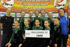 Halleiner TV_J